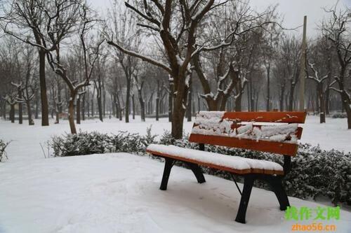 关于下雪的作文_550字