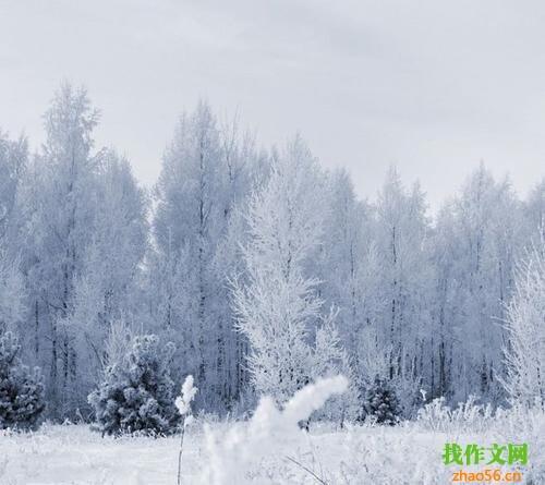 关于下雪的作文_700字