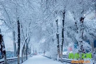 关于下雪的作文_650字