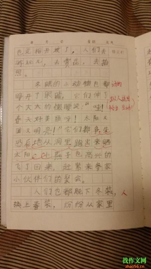 三年级日记:小小动物园_500字